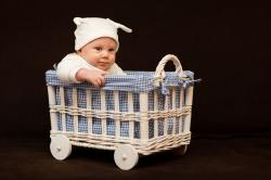 , adorable, baby, basket, beautiful, boy, child, toddler