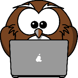 , owl, animal, bird, computer, funny, laptop, notebook