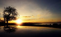 , sunrise, tree, black, silhouette, reflection, yellow