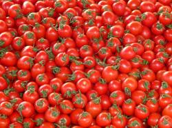 , tomatoes, vegetables, red, delicious, market, stand