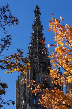 , ulm cathedral, architecture, building, church