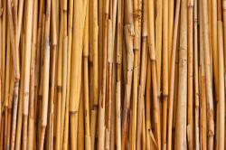 abstract, asian, background, bamboo, bunch, fence