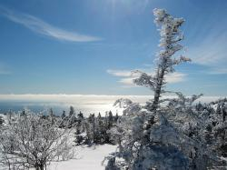 acadia national park, maine, landscape, winter, snow