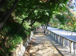 acha san mountain, korea, road, landscape, scenery