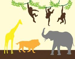 animal, animals, jungle, lion, elephant, giraffe