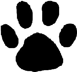 animals, baby, cat, mouse, black, icon, outline