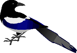 animals, cartoon, birds, bird, magpie, animal, magpies