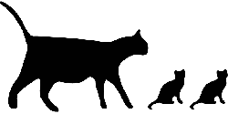 animals, cat, black, icon, silhouette, mammals, cats