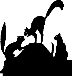 animals, cat, silhouette, angry, fight, cartoon, dog