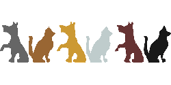 animals, cat, silhouette, dog, pets, colors, animal