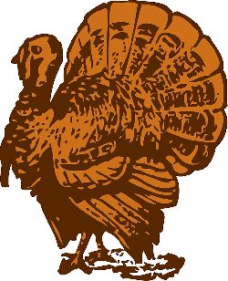 animals, food, turkey, cartoon, farm, birds, poultry