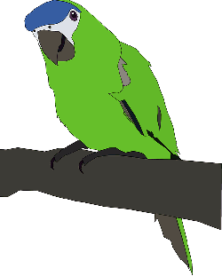 animals, green, cartoon, birds, bird, branch, sitting
