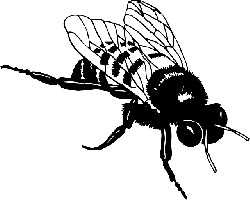 animals, honey, silhouette, cartoon, bugs, bee