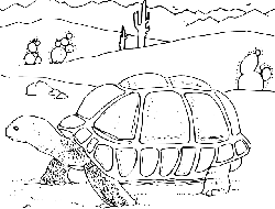 animals, lizard, turtle, drawn, sketch, plants, cartoon