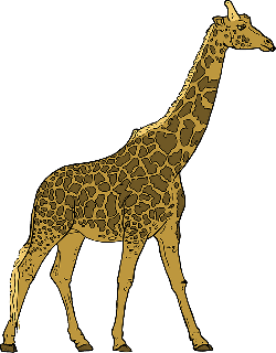 animals, outline, drawing, cartoon, giraffe, mammal