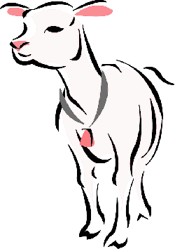 animals, outline, farm, mammals, sheep, lamb, mutton