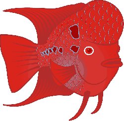 animals, red, flower, cartoon, fish, horn, scales