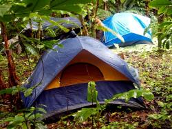 area, camping, day, dome, forest, green, nature, nobody