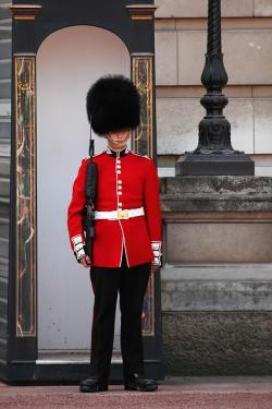 armed, buckingham, palace, duty, england, english