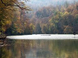 armenia, fall, autumn, forest, trees, lake, water