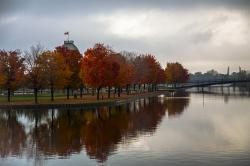 autumn, trees, reflections, montreal, old port, scenery