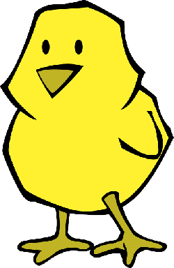 baby, flat, small, yellow, orange, bird, chicken