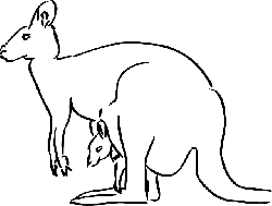 baby, simple, outline, child, kangaroo, parent, art