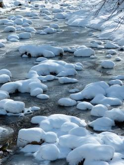 bach, snow, water, ice, frozen, cold, winter