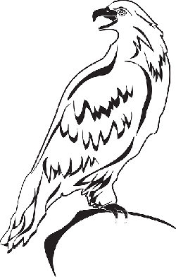back, outline, eagle, bird, wings, looking, art