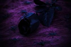 background, black, dark, decoration, evil, floral