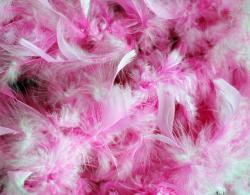 background, pink, feathers, fluffy, party