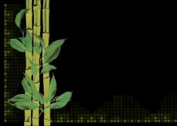 bamboo, plant, digital creation, digital artwork, black