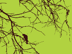 bird, branches, brown, green, silhouette, sticks, tree
