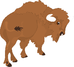 bison, view, large, cartoon, horns, animal, tail, rear