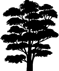 black, large, outline, silhouette, plants, palm, tree