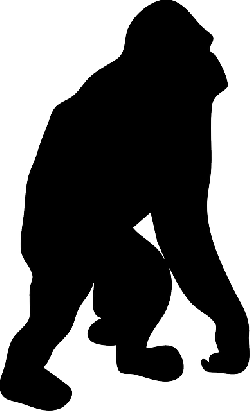 black, silhouette, orange, orangutan, animal, jungle