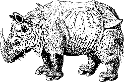black, white, cartoon, rhinoceros, wild, horn, animal