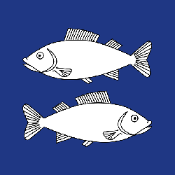 blue, opposite, fish, coat, arms, facing, face