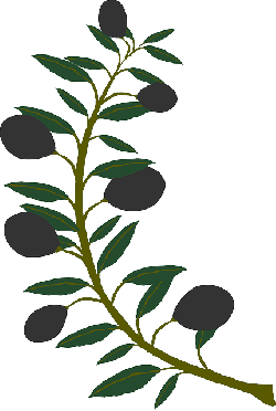 branch, olive, plant, tree