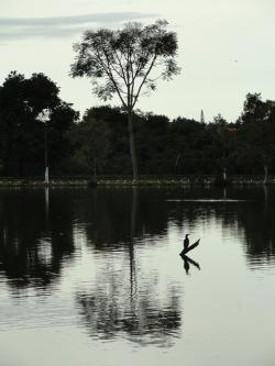 brasilia, brazil, lake, pond, water, reflections