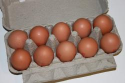 brown, cartons, eggs, hens, paper, white