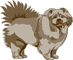 brown, dog, pet, animal, mammal, chow, fur, fluffy