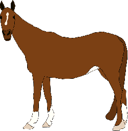 brown, horse, art, look, animal, tail, staring, equine