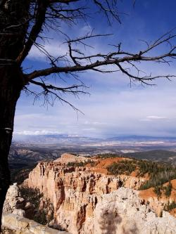 bryce canyon, utah, usa, rocks, scenery, landscape