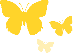 butterfly, animal, nature, yellow, insect