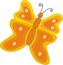 butterfly, orange, yellow, insect, animal, nature
