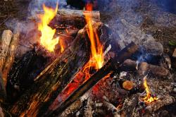 campfire, fire, heiss, wood, barbecue, ash, burn, flame