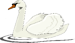cartoon, bird, swimming, swan, animal, lake, swans