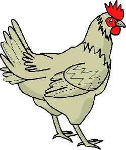 cartoon, farm, bird, hen, chicken, chickens, poultry