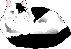 cat, black, white, cartoon, cats, and, fluffy